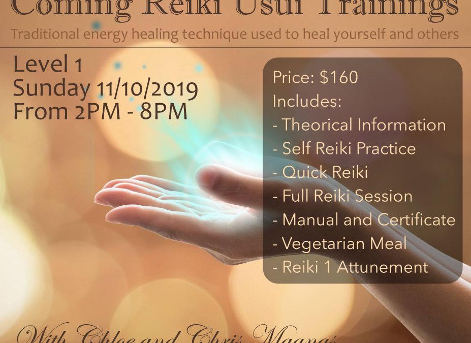 Reiki Training Level 1 on November 2019